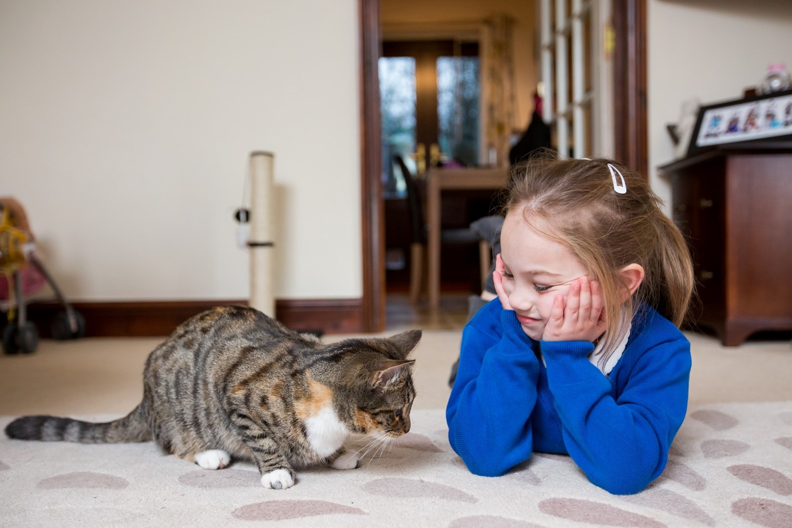 girl with blue jumper lying next to sitting cat