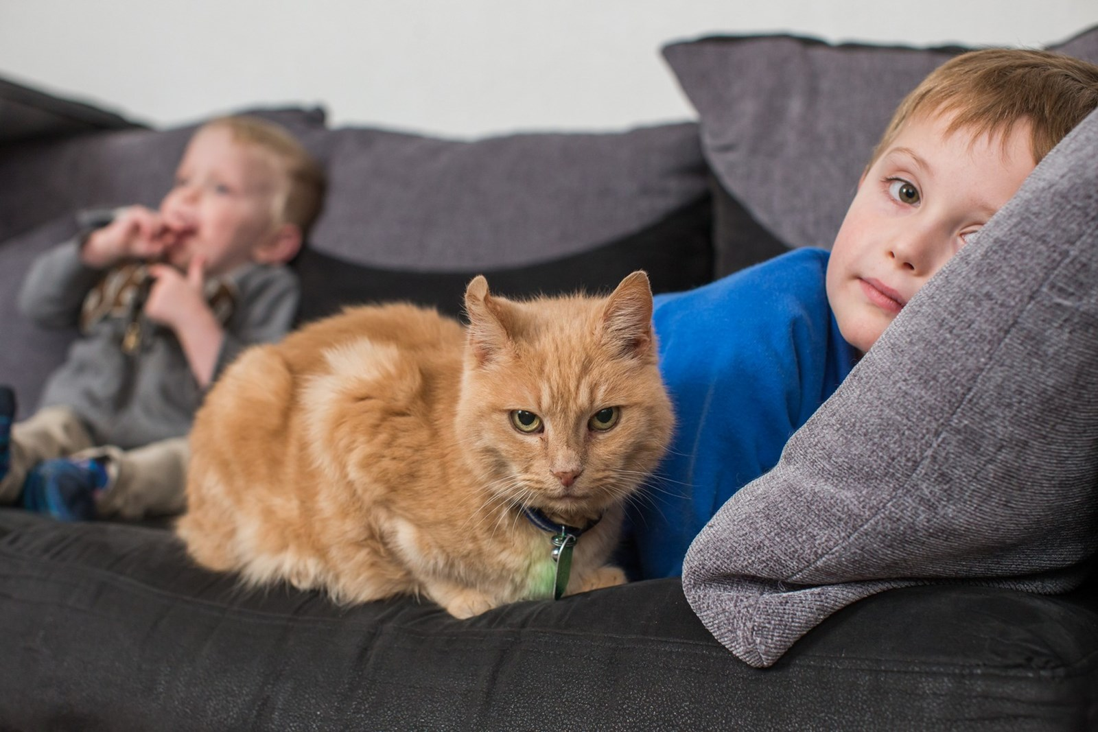 two kids with a ginger cat on sofa