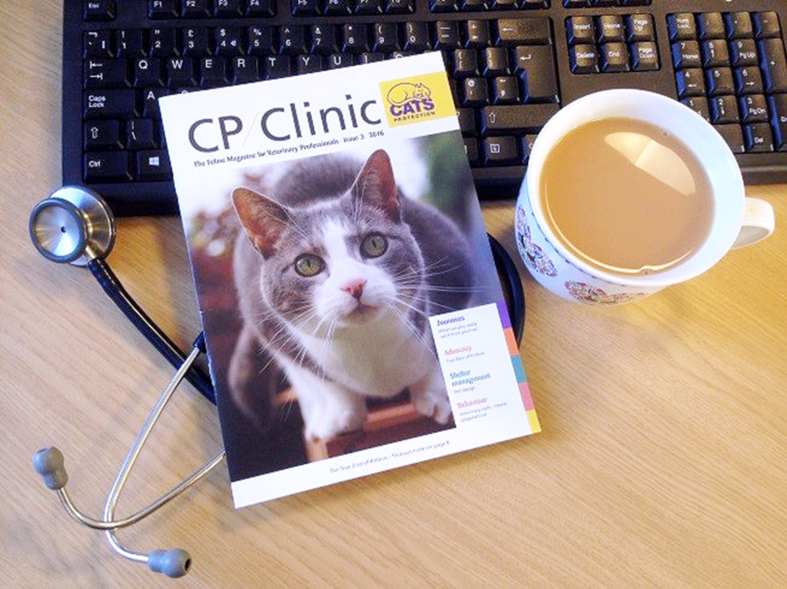 CP Clinic cats protection book