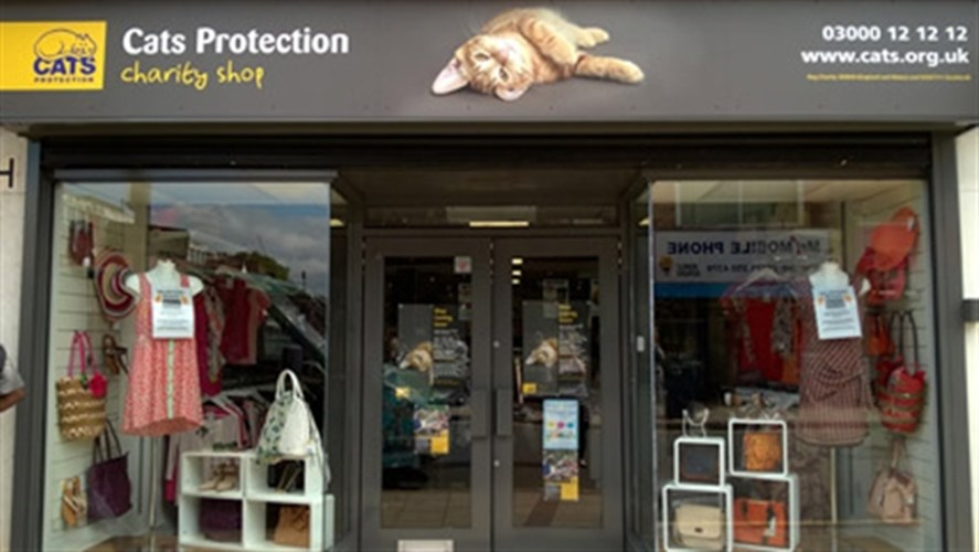 Shop Help Cats And Kittens While You Shop Cats Protection