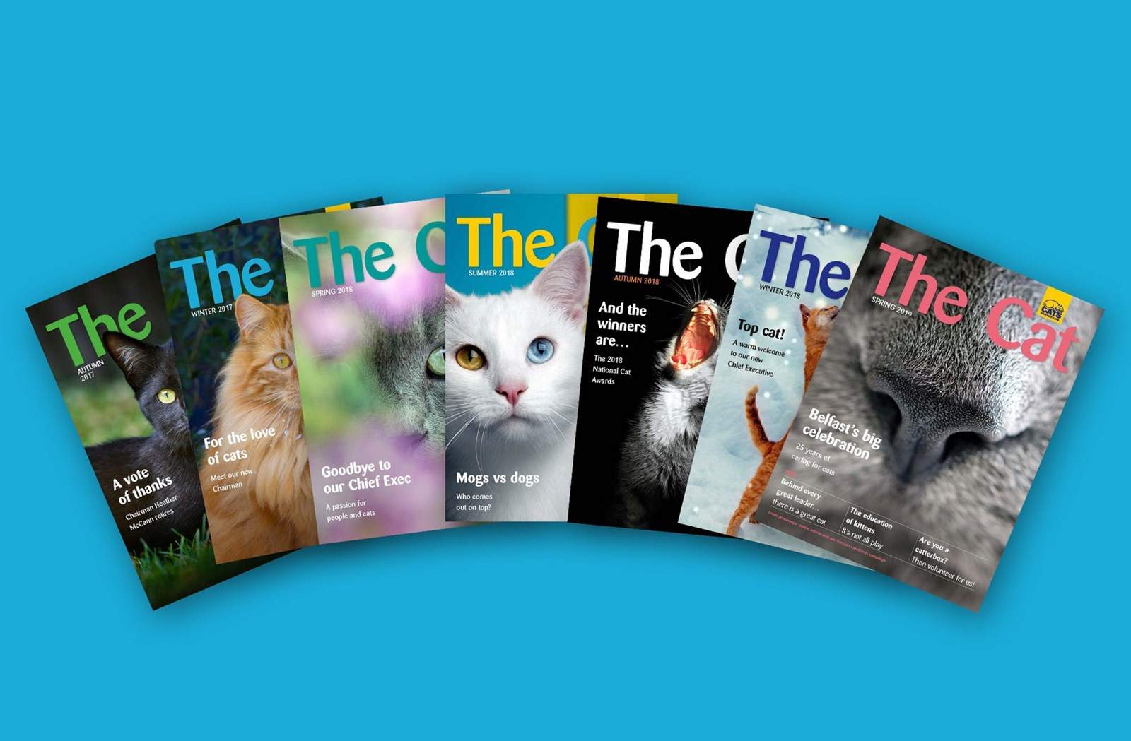 the-cat-mag-banner with magazines