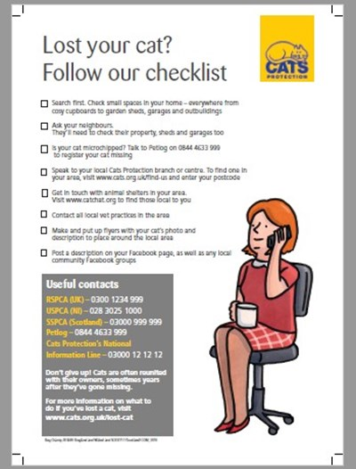 Lost Cat - What to Do If Your Cat Goes Missing | Cats Protection