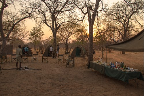 Camp at the Zambezi