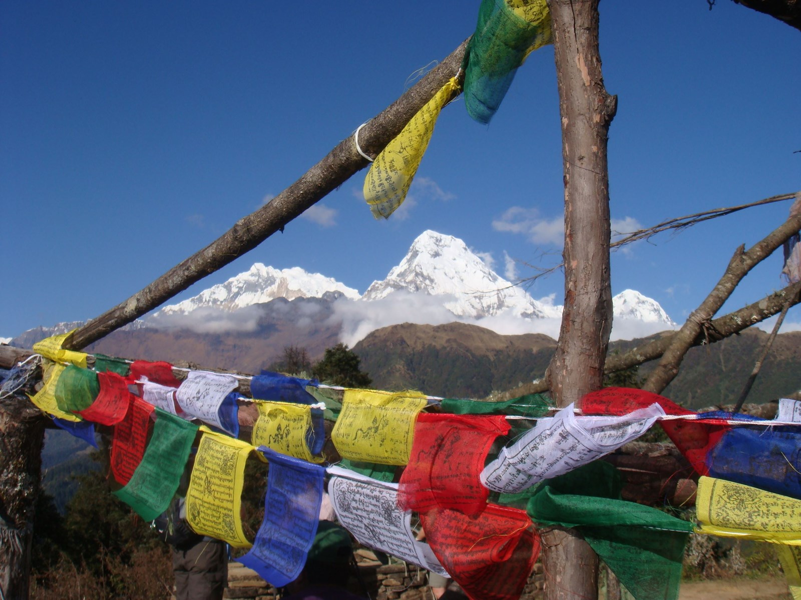 A - main image 2 - prayer flags and view - Nepal.JPG