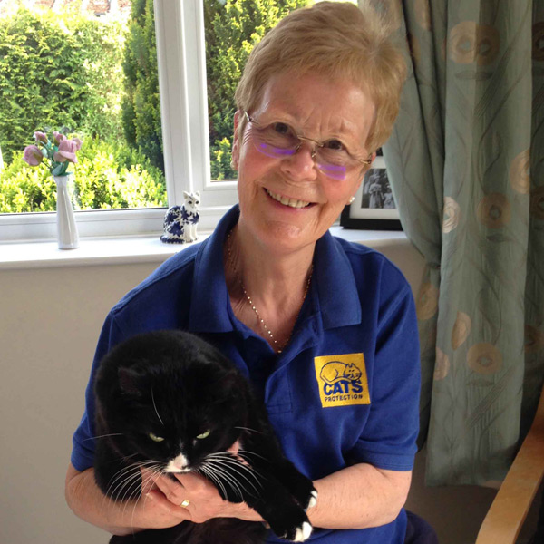 Cats Protection volunteer holding a cat