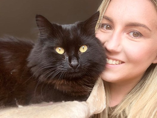 Press Releases Cats Protection