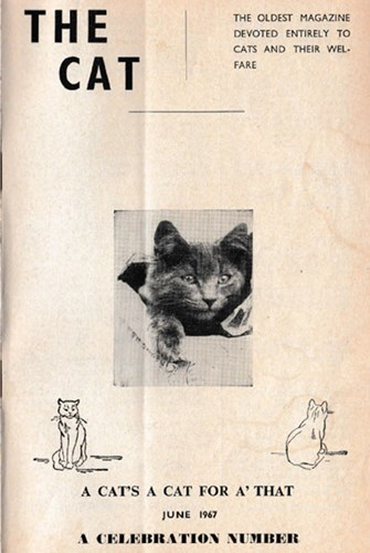 The Cat magazine cover June 1967