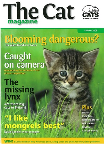 The Cat magazine cover Spring 2008
