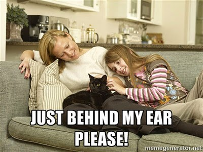 black cat being stroked by mum and daughter on sofa meme