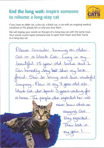 handwritten note from a cat owner inspiring other people to adopt a cat
