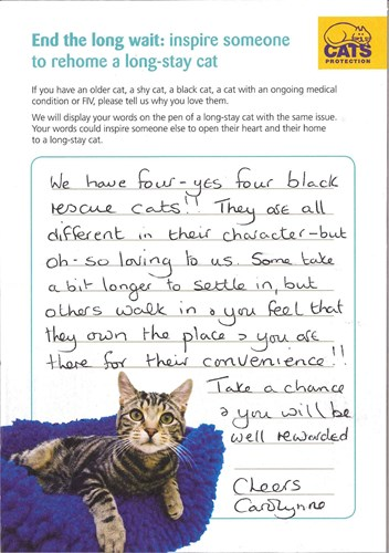 handwritten note from a cat owner who has 4 black cats inspiring other people to adopt a cat
