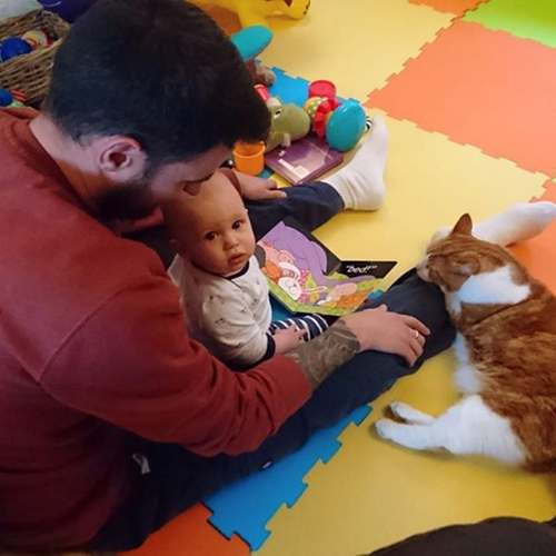 man reading book with baby and ginger cat