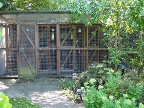 A large outdoor cat pen