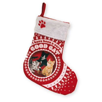 Christmas stocking for your cat