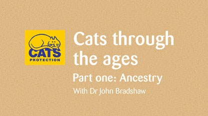 Graphic that says 'Cats through the ages. Part one: Ancestry with Dr John Bradshaw'