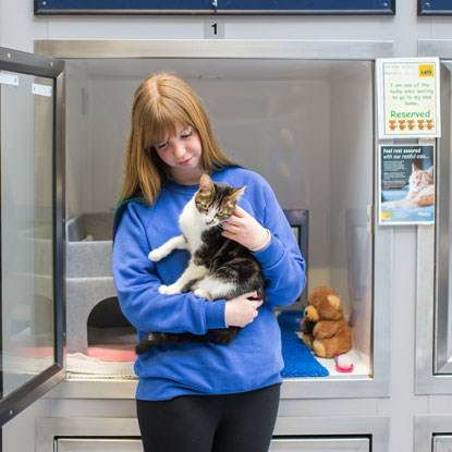 Cats Protection cat desensitisation volunteer holding white and tabby cat