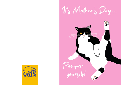 mother's day card for cat lover