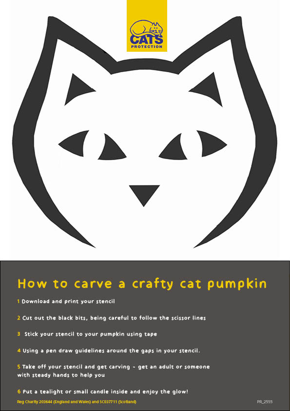 how to carve a crafty cat pumpkin graphic easy