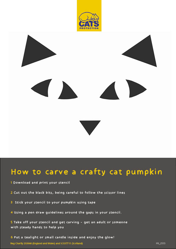 how to carve a crafty cat pumpkin graphic difficult