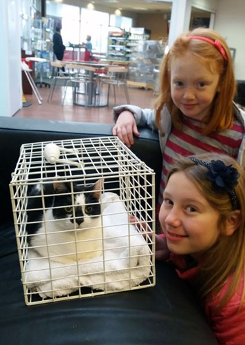 two young girls with black and white cat in cat carrier
