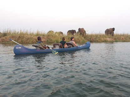 three people in a canoe on the river next to elephants