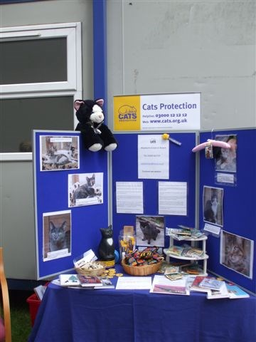 A Cats Protection stand at a local fete