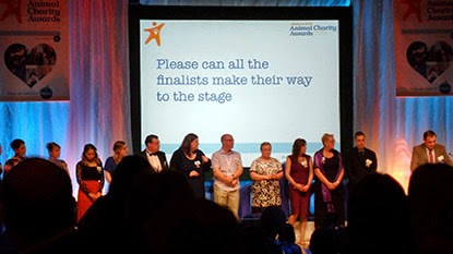 Animal Charity Awards 2015 finalists on stage