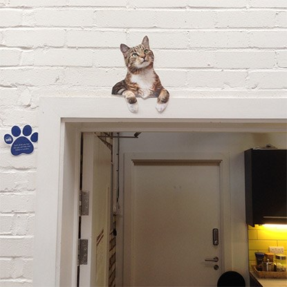 Paper cat cut-out above door frame