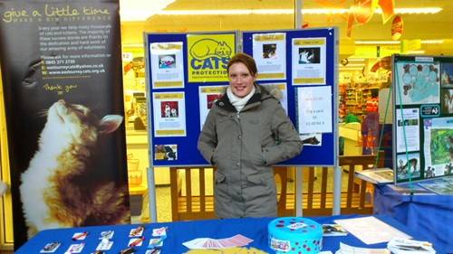 Woman at Cats Protection stand at a Christmas fair