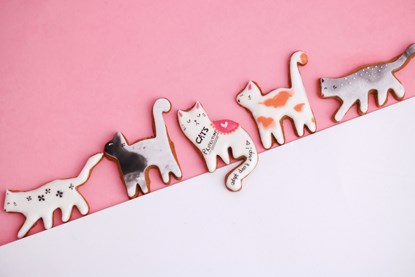 ginger biscuits decorated to look like cats