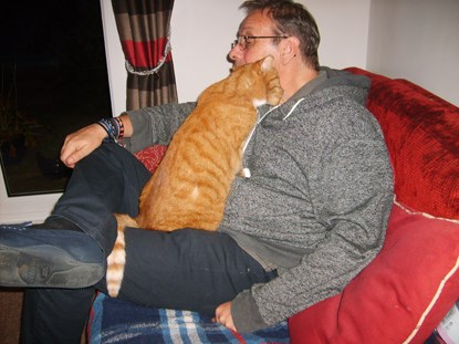ginger cat rubbing its head on man's cheek