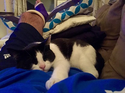 black and white cat on lap of man wearing a cast on his leg