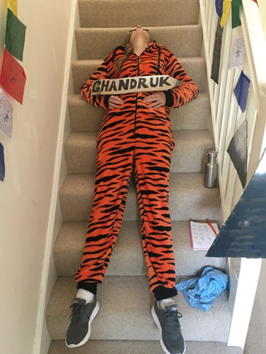 woman in tiger print onesie stretched out on stairs
