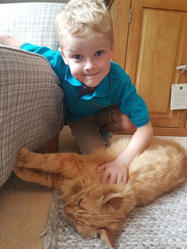 young blonde boy stroking longhaired ginger cat