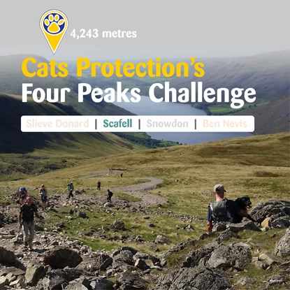 Cats Protection's Four Peaks Challenge – Scafell trek