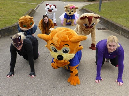 group of people dressed as cats and in cat costumes at a race starting line