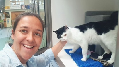 brunette woman stroking behind the ear of a black and white cat in Cats Protection adoption centre