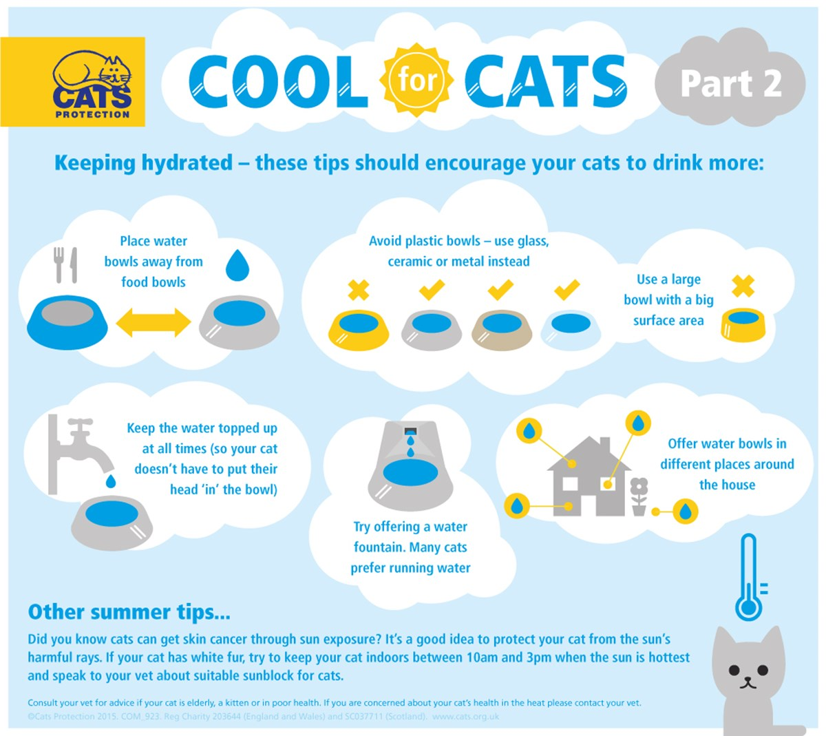 keeping your cat cool in summer part 2