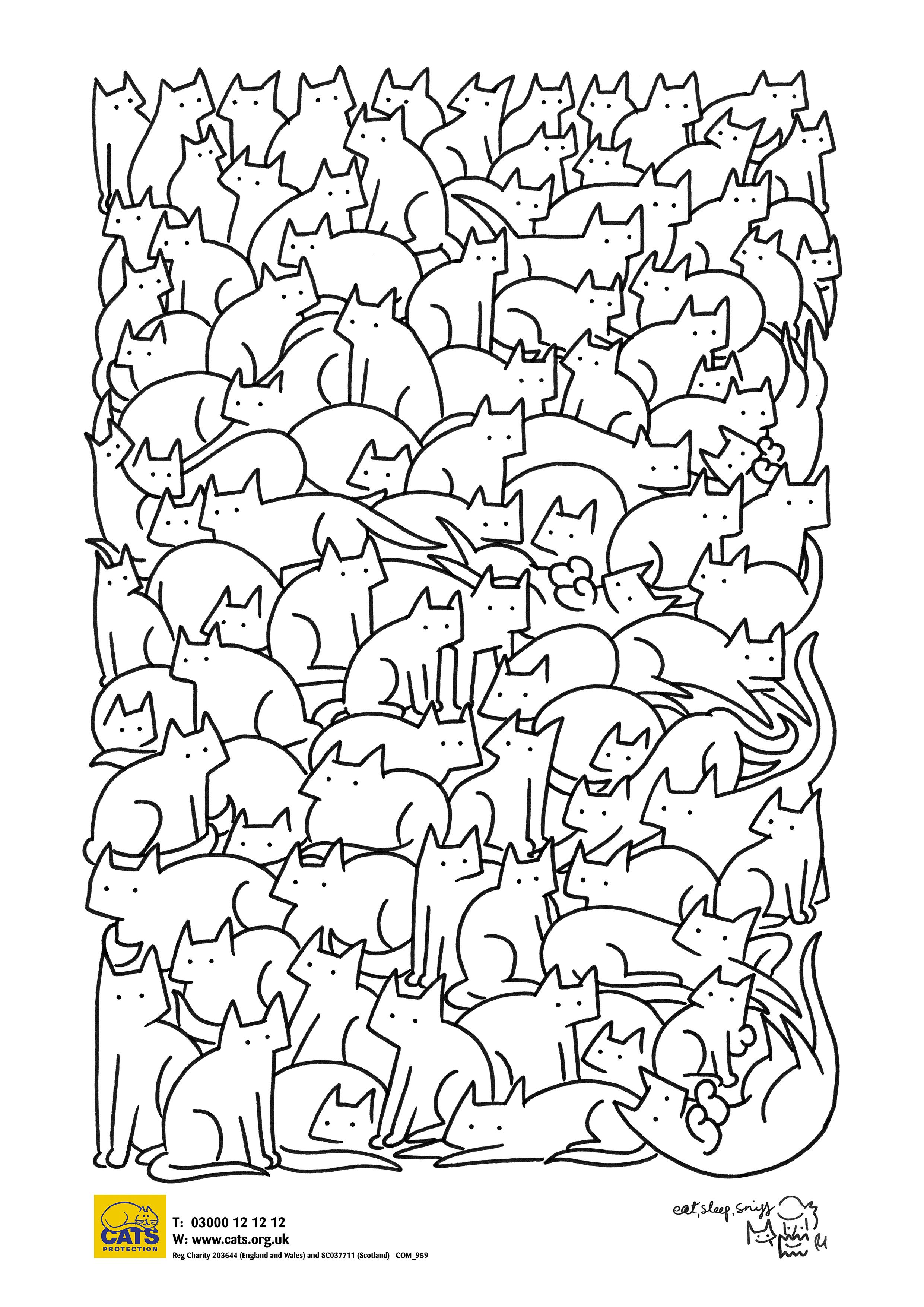 mindfulness cat colouring sheet