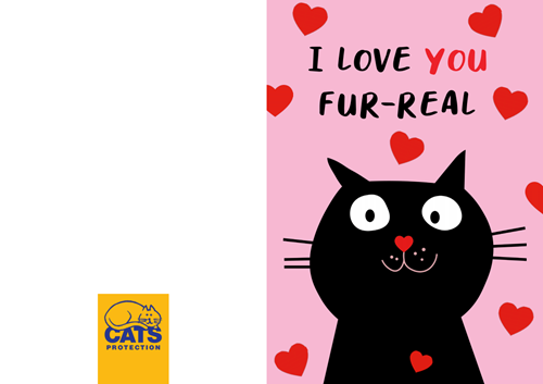I love you fur-real Valentine's Card