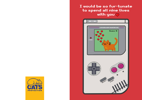 Fur-tunate to spend nine lives with you Valentine's Card