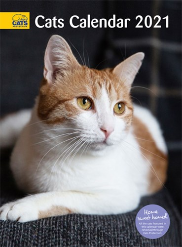Cats protection Cats Calendar 2021 cover featuring ginger-and-white three-legged cat