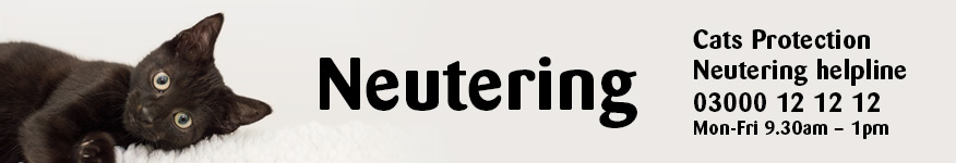 neutering website banner