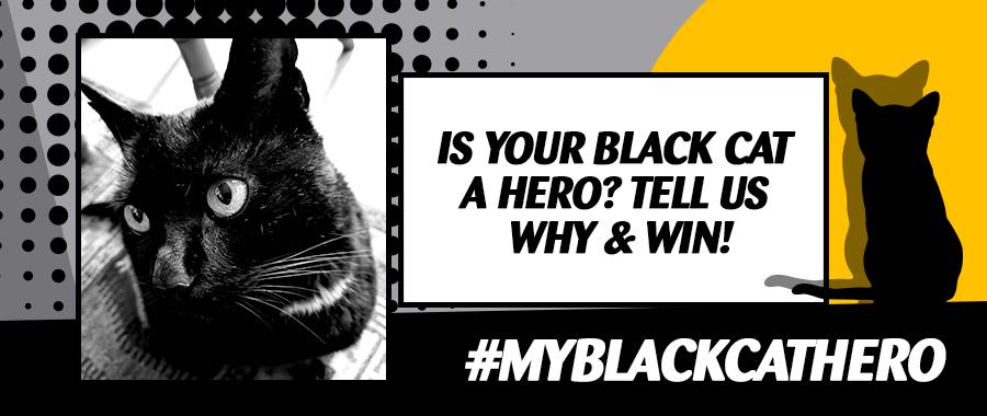 National Black Cat Day banner