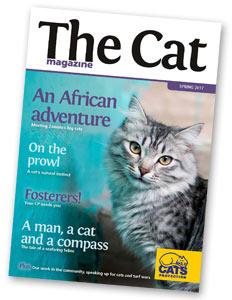 The Cat magazine cover