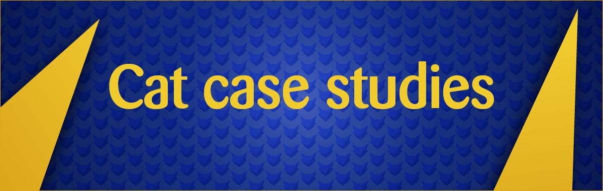 Cat case studies banner