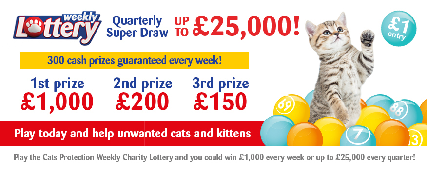 Charity Lottery – Join Cats Protection's Weekly Charity Lottery