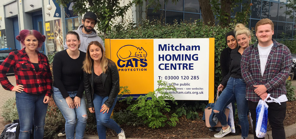 Volunteers from ASOS helped out at our Mitcham Homing Centre