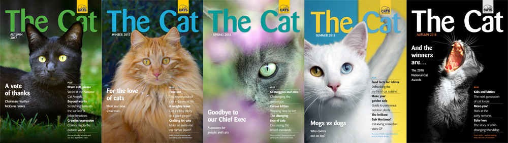 The Cat magazine covers header