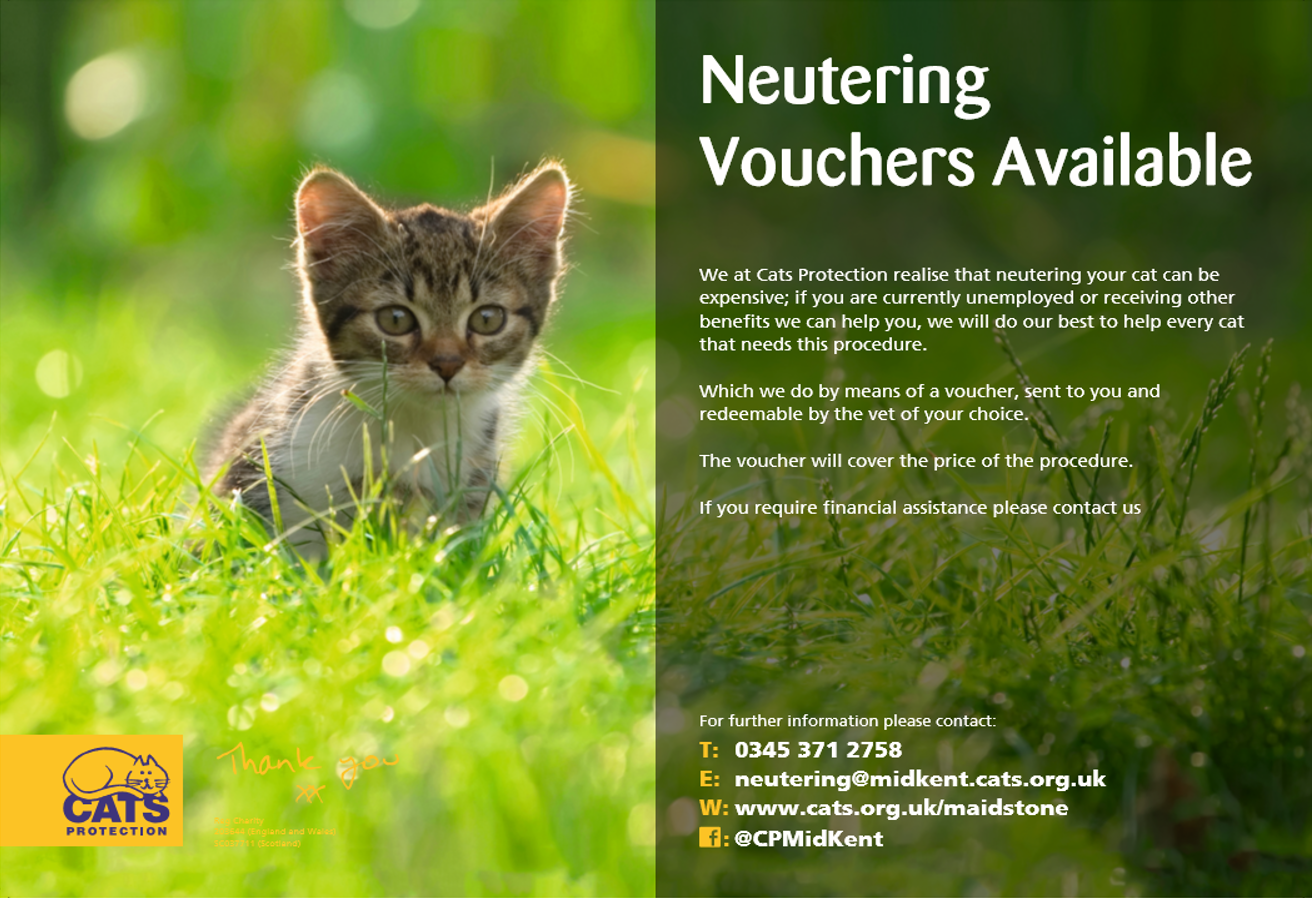 Cats Protection Cat Neutering
